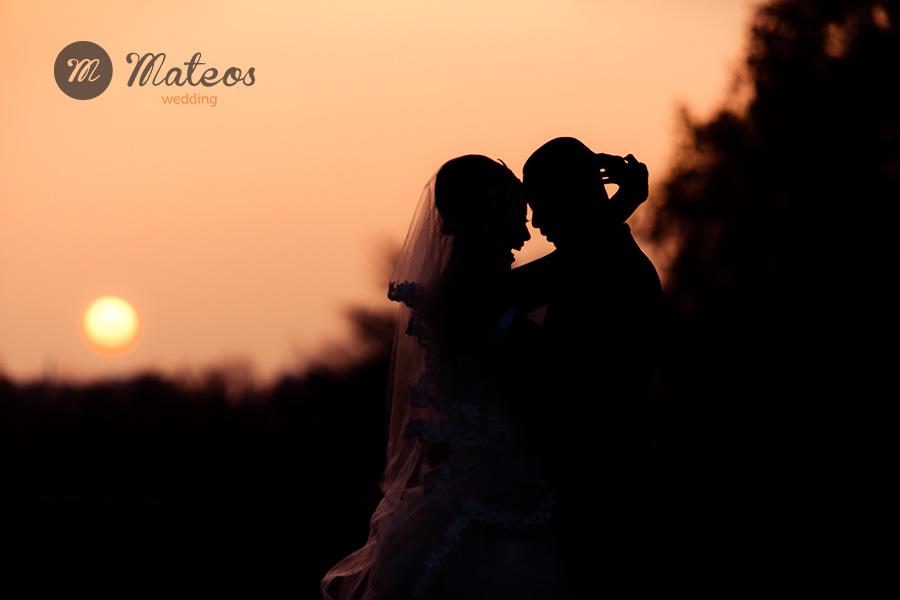 photographer 106-
